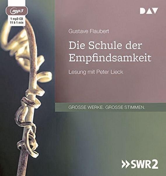 Flaubert: Die Schule der Empfindsamkeiten (1mp3-CD)
